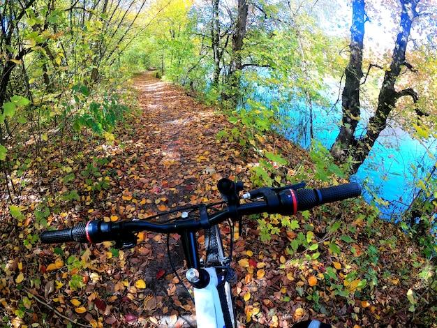Menina anda de bicicleta pela floresta. menina andando de bicicleta ao longo do caminho na floresta