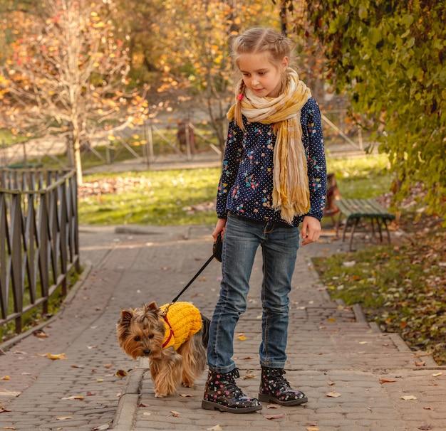 Menina andando com o yorkshire terrier