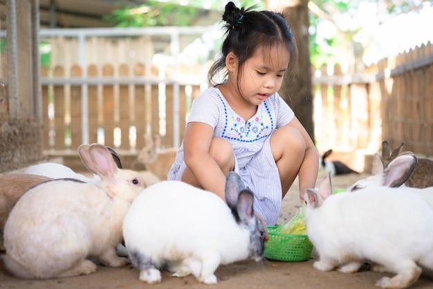 Menina asiática bonitinha alimentando coelho na fazenda