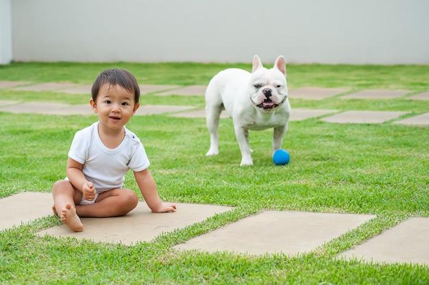 Menina asiática de 1 ano brincando com seu cachorro bulldog francês. cena agradável que lembra a amizade entre crianças e animais domésticos. foco seletivo. copie o espaço
