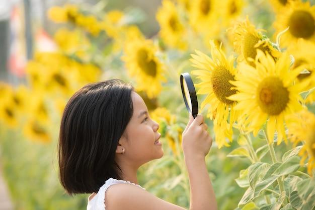 Menina asiática feliz se divertindo entre os girassóis florescendo sob os suaves raios do sol.