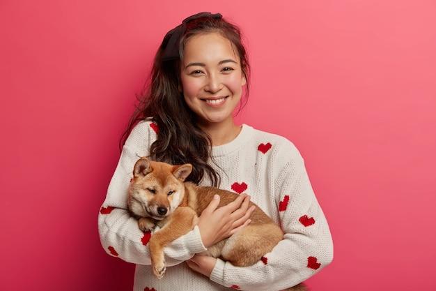 Menina asiática positiva recebe lindo cachorro shiba inu como presente, pronto para cuidar do animal doméstico, gosta de brincar com animais, passar o dia juntos.