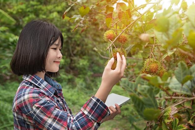 Menina asiática, verificação de frutas orgânicas de relatório