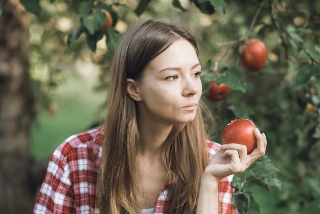 Menina bonita, colhendo maçãs orgânicas maduras