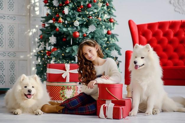 Menina bonita e dois cães grandes e fofos lobo branco ao lado de uma árvore de natal e caixas vermelhas com presentes. ano novo interior festivo.