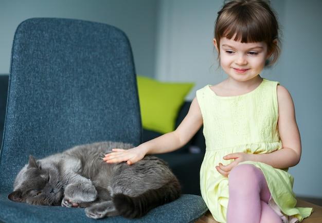Menina bonitinha acariciando seu gato britânico cinza