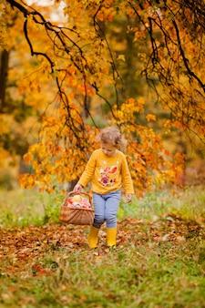 Menina bonitinha colhendo maçãs em um fundo de grama verde em dia de sol