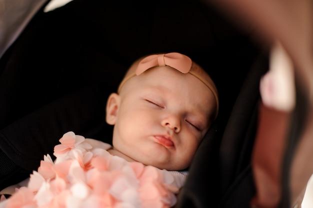 Menina bonitinha dormindo em seu carrinho de bebê