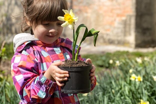 Menina bonitinha no jardim com narcisos coloridos