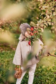 Menina bonitinha pegando maçãs em um fundo de grama verde em um dia de sol