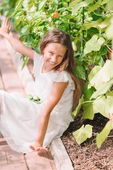 Menina bonitinha recolhe colheita pepinos e tomates em estufa