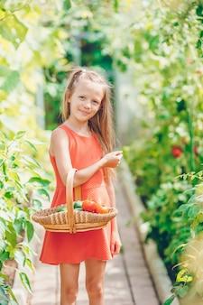 Menina bonitinha recolhe cultura pepinos e tomates em estufa