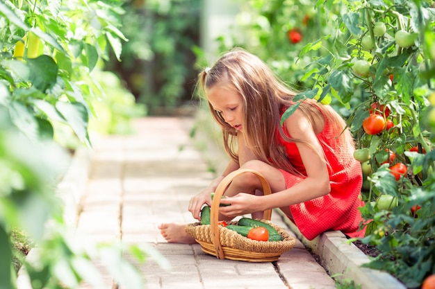 Menina bonitinha recolhe cultura pepinos e tomates na estufa