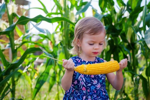 Menina bonitinha segurando uma espiga de milho