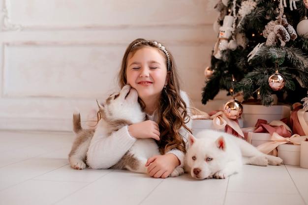 Menina brincando com filhotes husky perto de árvore de natal