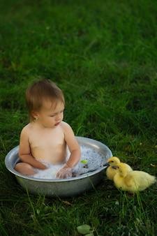 Menina brincando com um patinho em um fundo brilhante, patos nadando