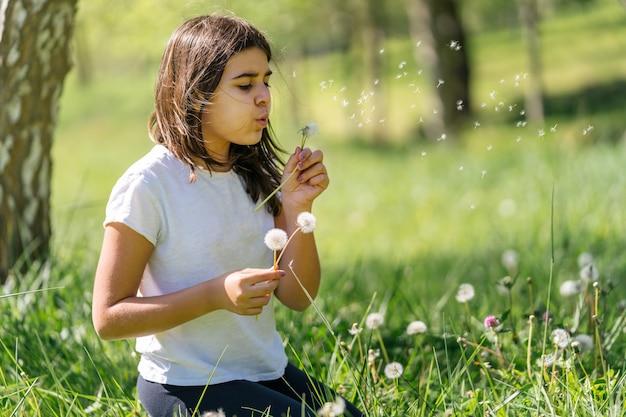 Menina caucasiana de cabelos castanhos soprando dente-de-leão soprando flores em um campo verde cheio de flores