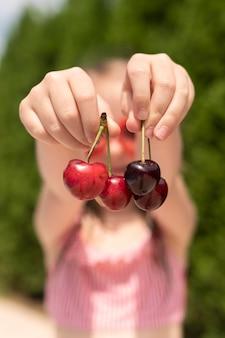 Menina close-up com cerejas
