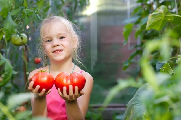 Menina colhendo tomate em uma estufa Foto Premium