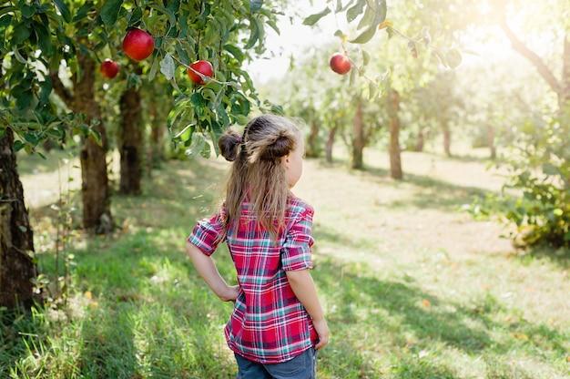 Menina com maçã no pomar de maçãs