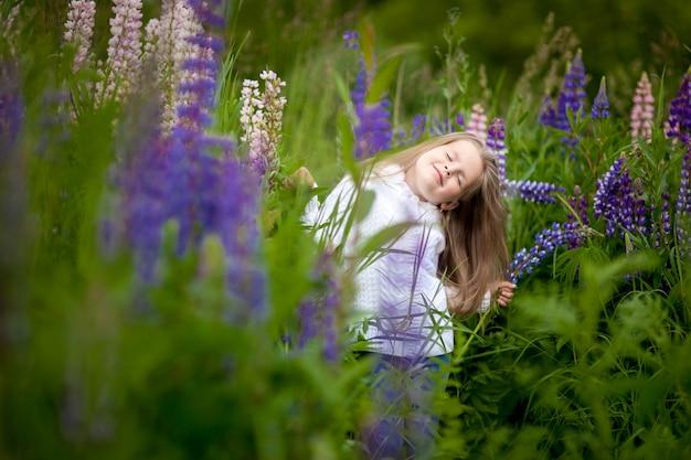 Menina, com, um, buquê, em, a, mãos, de, roxo, flores, tremoço, campo roxo, flores, tremoço, campo, pôr do sol
