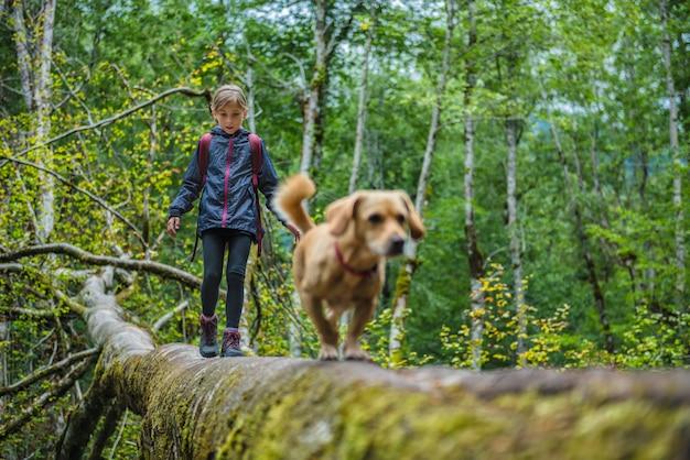 Menina com um cachorro, caminhadas na floresta