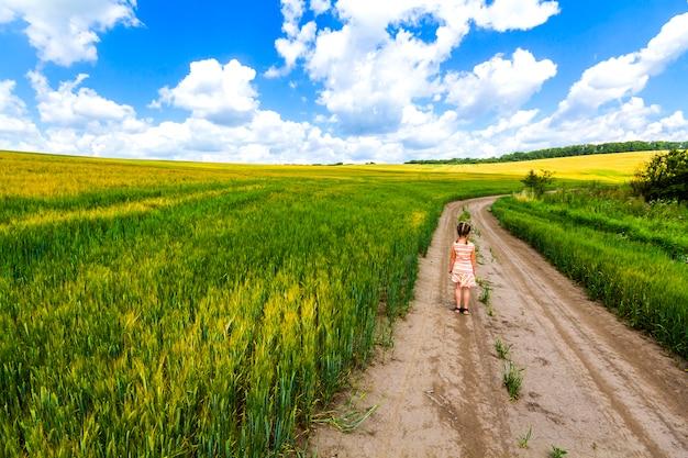 Menina criança andando sozinho na estrada de terra de verão no campo da colheita verde.