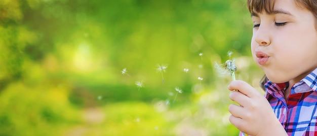 Menina criança com dentes-de-leão no parque