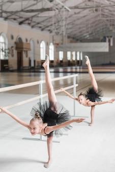 Menina da bailarina que estica no barre com seu amigo