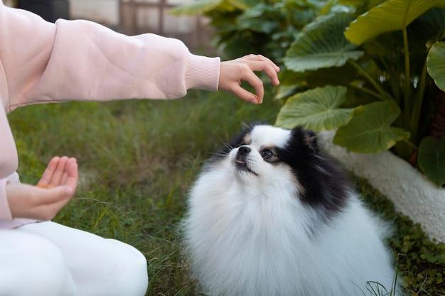 Menina dando uma comida para o cachorro dela