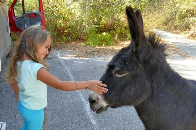 Menina de 4 anos e meio acaricia um burro