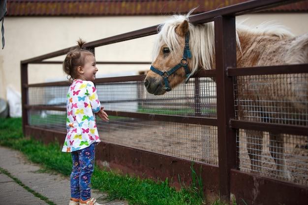 Menina de aparência caucasiana gosta de um cavalo pônei em um estábulo em uma fazenda. criança feliz, comunicação com animais, zoológico, emoções.