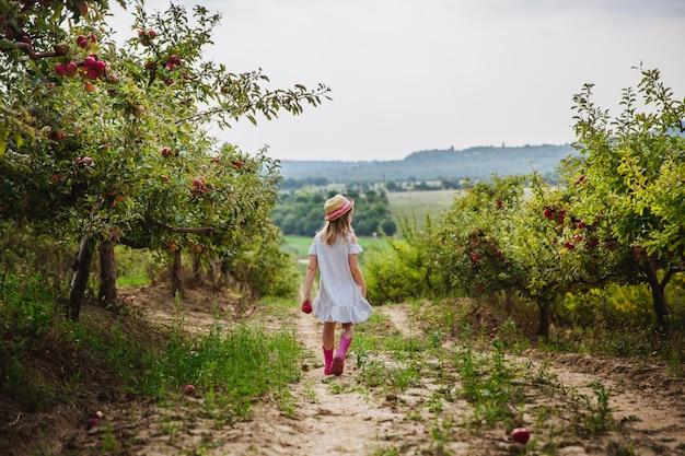 Menina de chapéu e botas de chuva caminha e come maçã doce no pomar de maçãs
