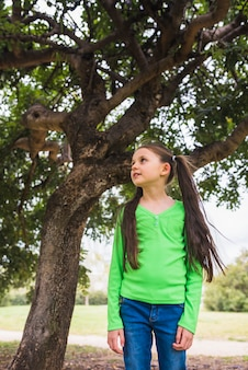 Menina, desgastar, verde, t-shirt, ficar, sob, grande, árvore