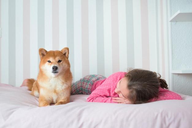 Menina dormindo em sua cama rosa enquanto seu cachorro shiba inu cuida dela