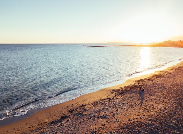 Menina e cachorro na praia ao pôr do sol, vistas aéreas