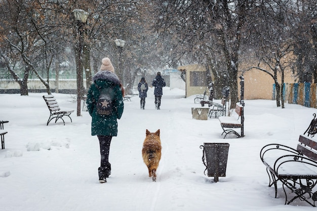 Menina e cachorro no parque da cidade no inverno durante a queda de neve_