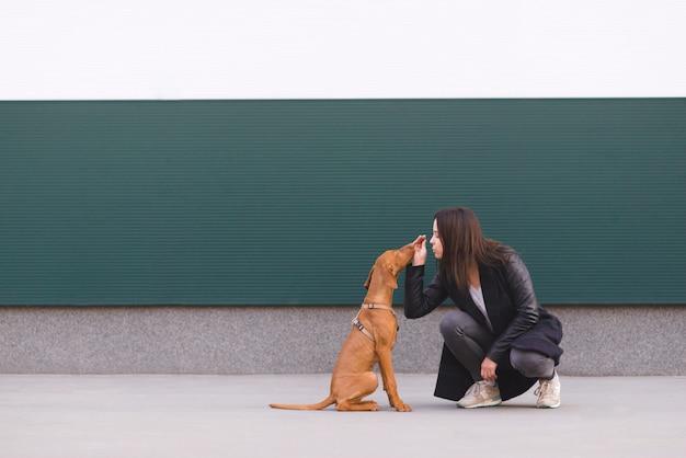 Menina e cachorro sentado contra a parede e jogando bonito.