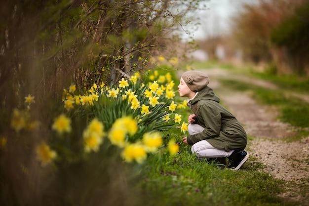 Menina feliz bonitinha na primavera país cheirando narcisos amarelos