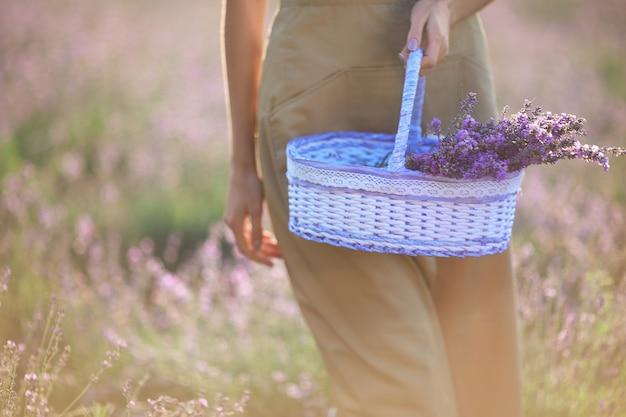 Menina irreconhecível segurando uma cesta de flores de lavanda
