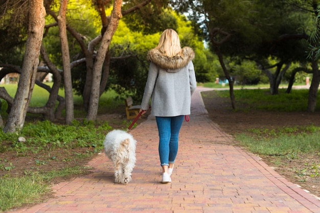 Menina jovem, andar, com, dela, cão, em, um, parque