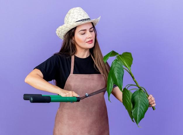 Menina linda jardineira satisfeita de uniforme usando chapéu de jardinagem segurando e cortando planta com tesoura isolada em azul