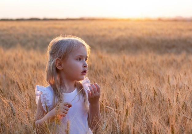 Menina loura bonito no vestido branco dremes e detém spikelet no campo de trigo ao pôr do sol