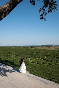 Menina na fazenda de chá