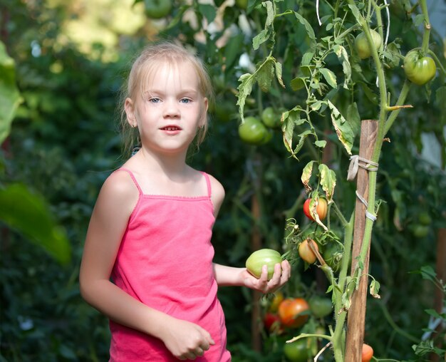 Menina no jardim de tomate