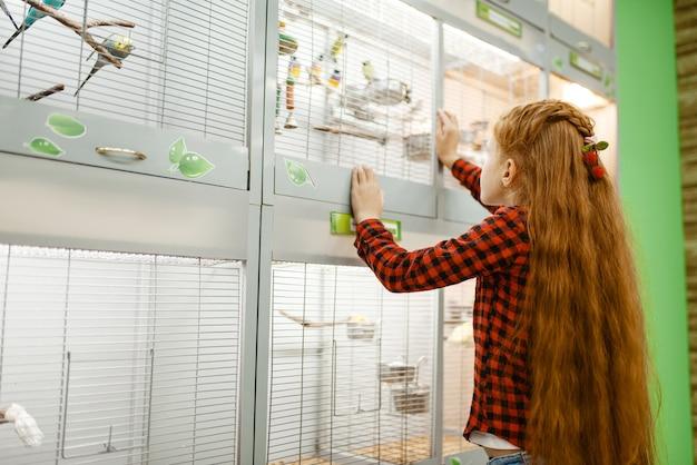 Menina olhando pássaros na gaiola, pet shop. criança comprando equipamentos em petshop, acessórios para animais domésticos