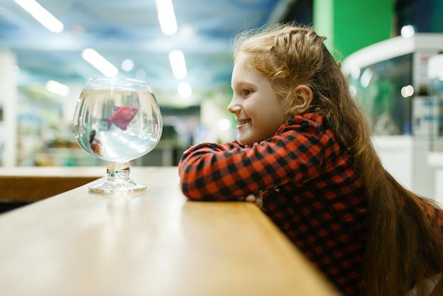 Menina olhando peixe-de-rosa em vidro, pet shop. criança comprando equipamentos em petshop, acessórios para animais domésticos