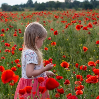 Menina pequena bonito da criança loura no vestido branco e vermelho no no campo da papoila no por do sol