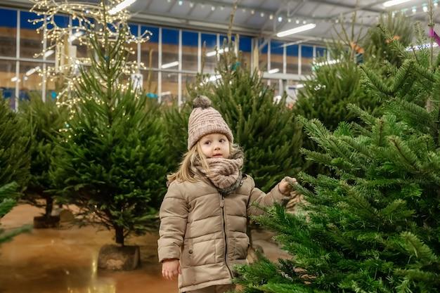 Menina pequena de três anos escolhe uma árvore de natal no mercado.