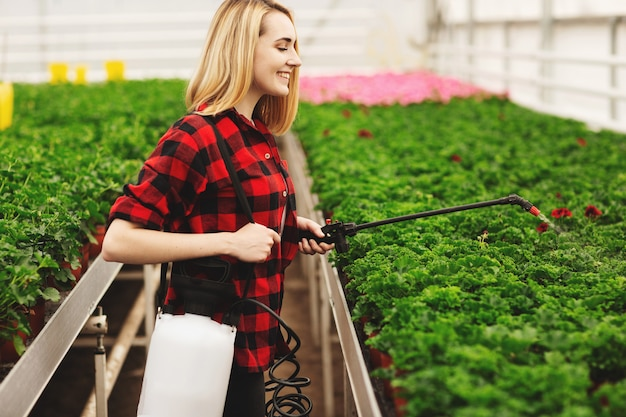 Menina pulveriza as plantas. garota trabalhando em estufas. plantas fertilizantes